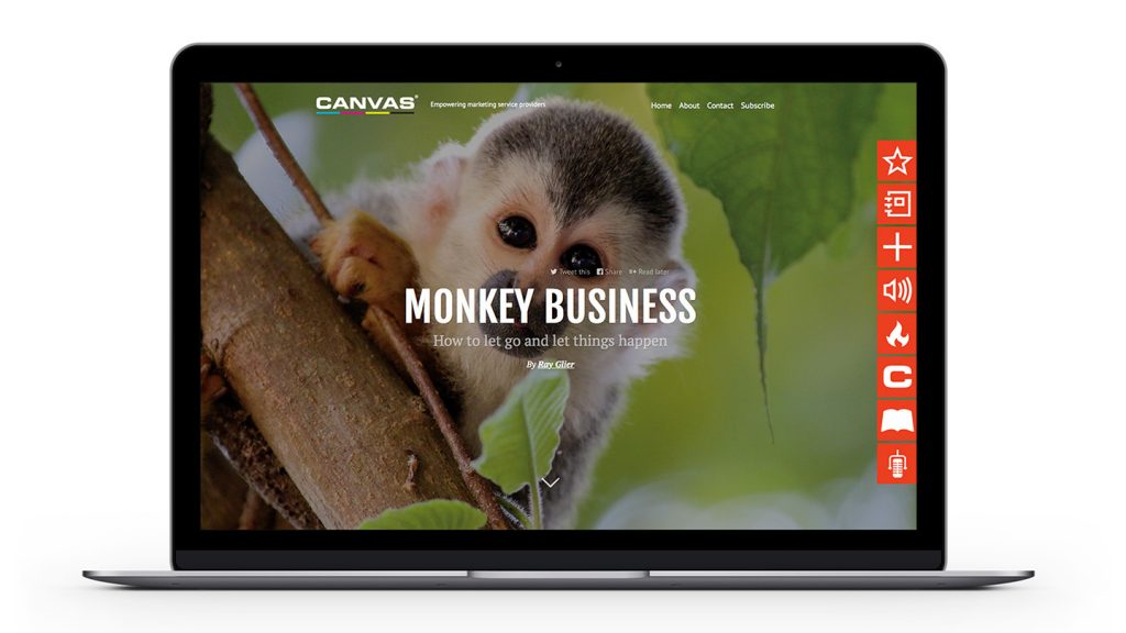CFO-MonkeyBusiness