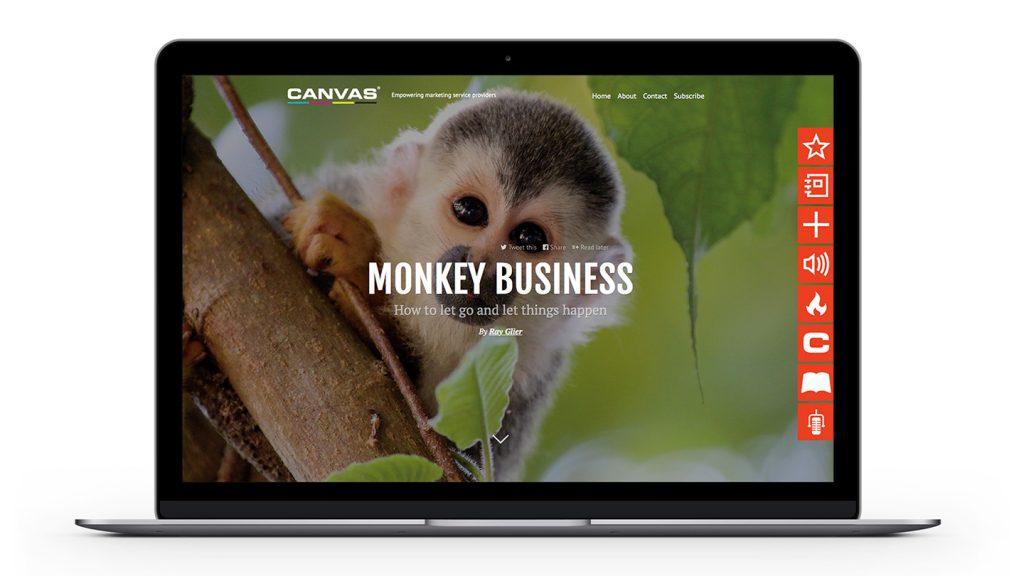 CFO-MonkeyBusiness